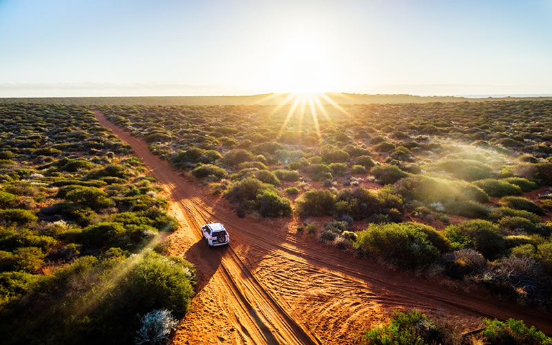 Golden Outback