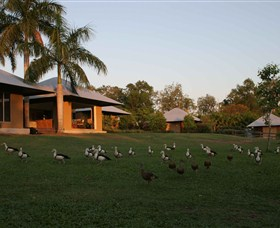 Feathers Sanctuary - Broome Tourism