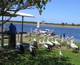 Mountain View Caravan and Mobile Home Village - Broome Tourism