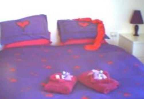 Aloomba Lavender - Accommodation - Broome Tourism