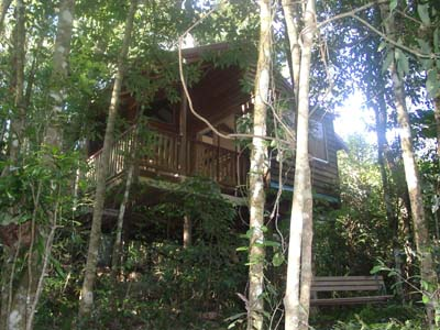Adjinbilly Rainforest Retreat Cabins - Broome Tourism