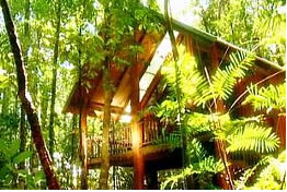 The Canopy Treehouses - Broome Tourism