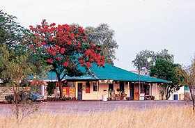 Wauchope Hotel and Roadhouse - Broome Tourism