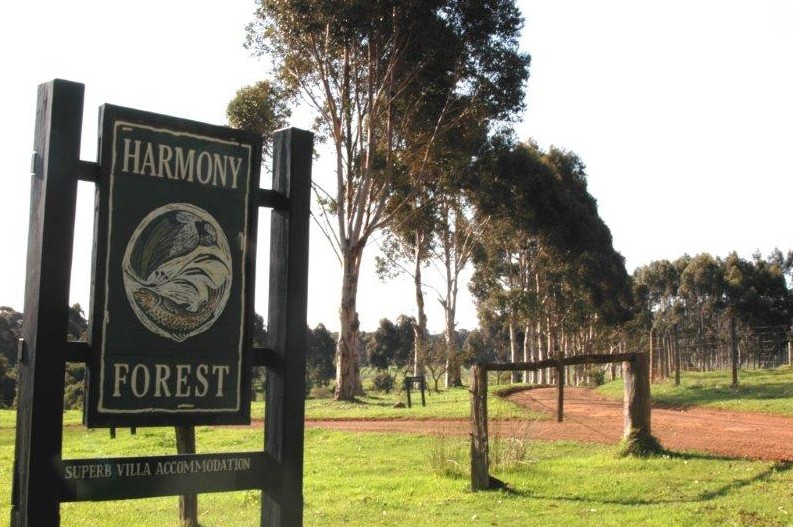 Harmony Forest - Broome Tourism