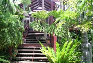 Maleny Tropical Retreat - Broome Tourism