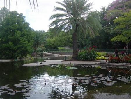 Brisbane City Botanic Gardens - Broome Tourism