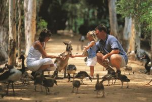 Billabong Sanctuary - Broome Tourism