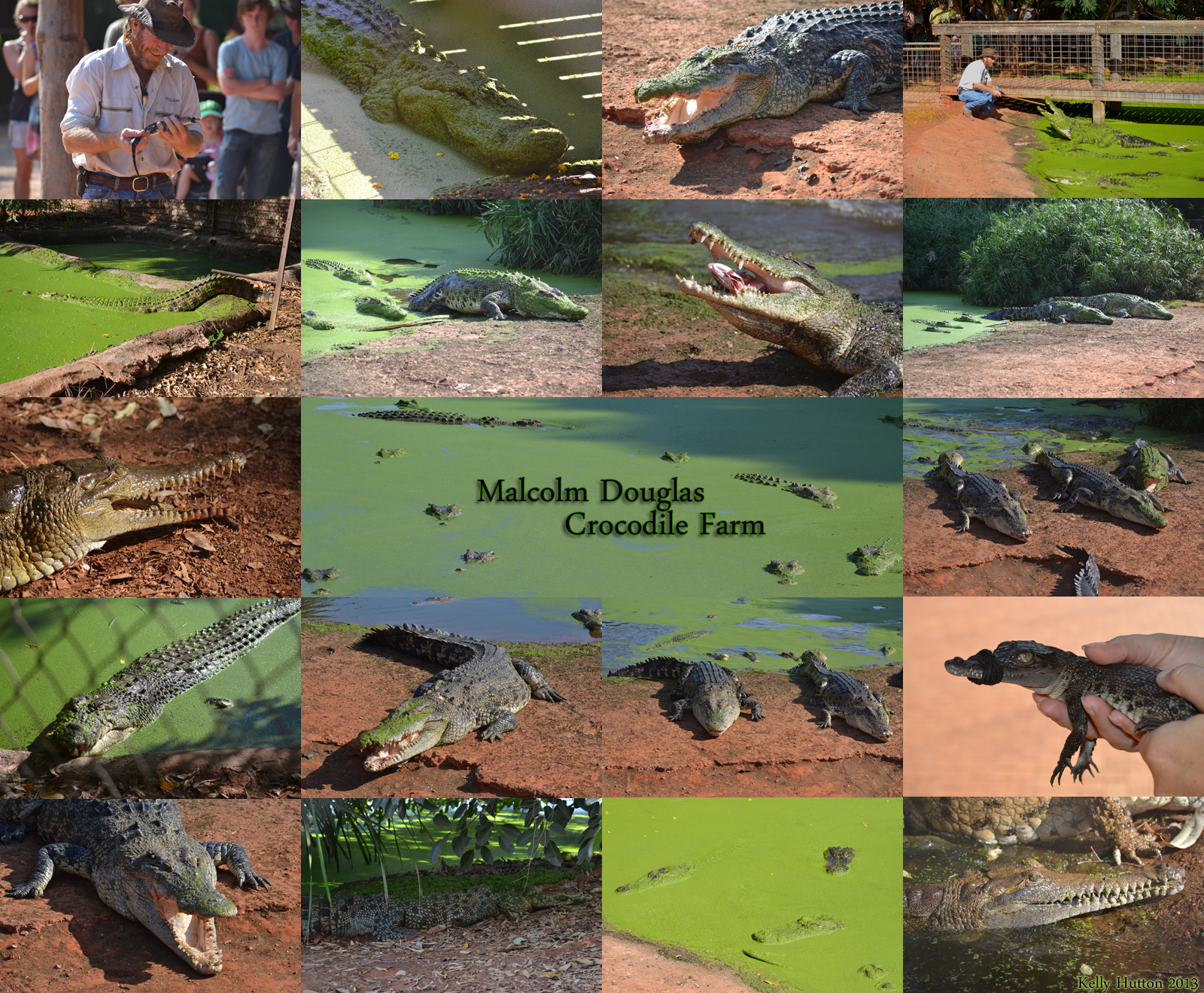 The Malcolm Douglas Crocodile Park - Broome Tourism