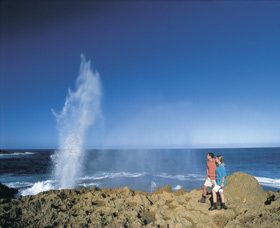 The Blowholes Carnarvon - Broome Tourism