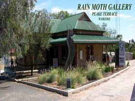 Rain Moth Gallery - Broome Tourism