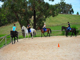 Megan Jones Riding School and Trail Rides - Broome Tourism