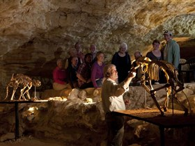 Naracoorte Caves National Park - Broome Tourism