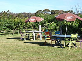 Cerise Brook Orchard  Family Golf - Broome Tourism
