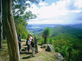 Gold Coast Hinterland Great Walk - Broome Tourism
