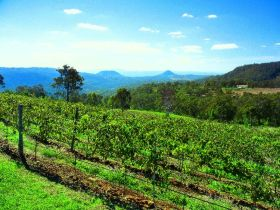 Preston Peak Wines - Broome Tourism