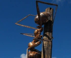 Augathella Meat Ant Park and Sculpture - Broome Tourism