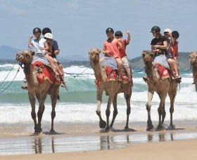 Camel Rides with Coffs Coast Camels - Broome Tourism