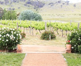 Brindabella Hills Winery - Broome Tourism