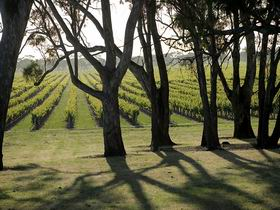 Henry's Drive Vignerons - Broome Tourism