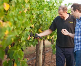 Fratin Brothers Vineyard - Broome Tourism