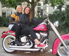 Wild Ride Harley and Motorcycle Tours