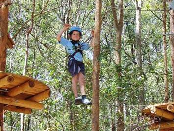 TreeTops Newcastle - Broome Tourism