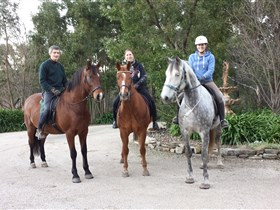 Academy of Dressage - Broome Tourism
