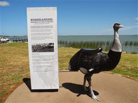 Birdman of the Coorong - Broome Tourism