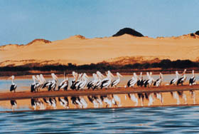 Coorong National Park - Broome Tourism