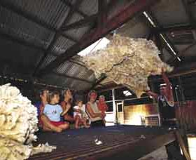 Shear Outback the Australian Shearers Hall of Fame - Broome Tourism