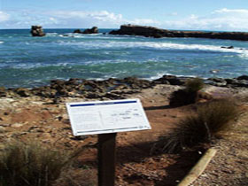 Cape Buffon Walking Trail