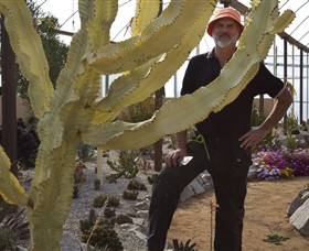 Cactus Country - Broome Tourism