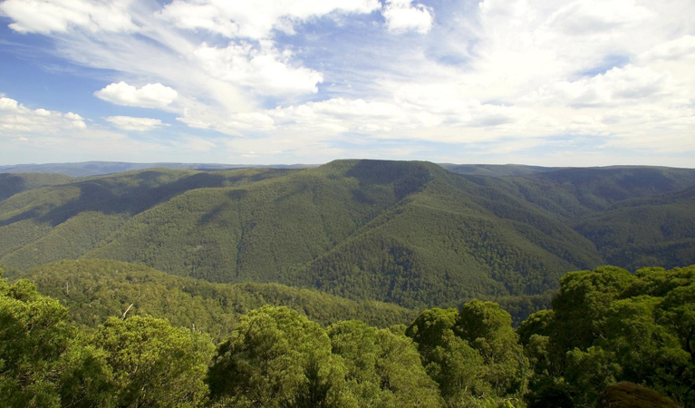 Barrington Tops National Park - Broome Tourism
