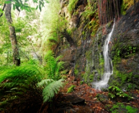 Fairy Bower Falls - Broome Tourism