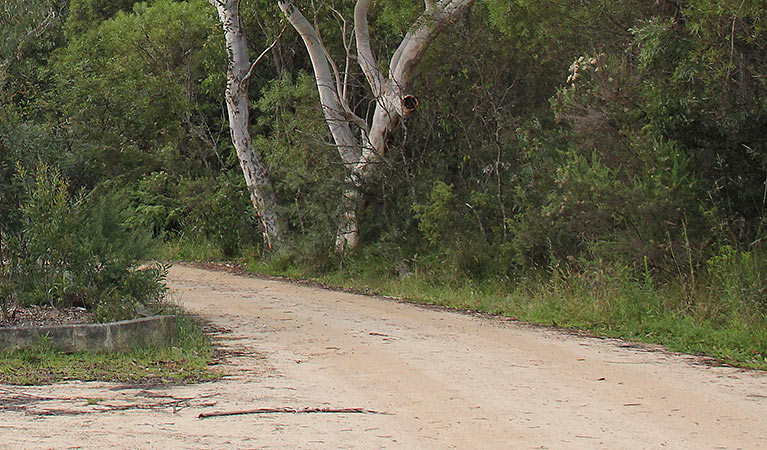 Riverview walking track - Broome Tourism