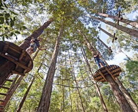 TreeTop Adventure Park Central Coast - Broome Tourism