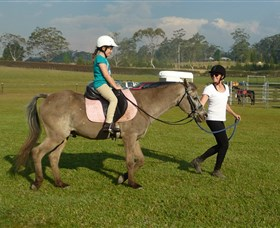 Port Macquarie Horse Riding Centre