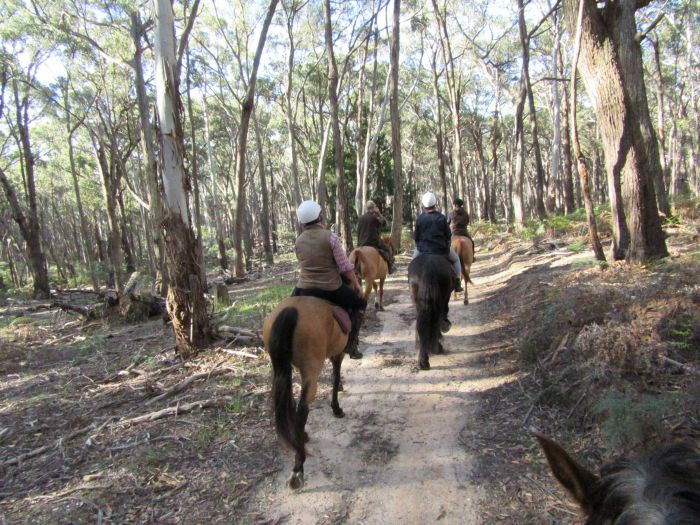 Silver Brumby Trails - Broome Tourism