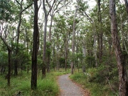 Caboolture Regional Environment Education Centre - Walking Trails - Broome Tourism
