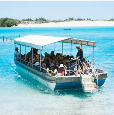 Willie Creek Pearl Farm - Broome Tourism
