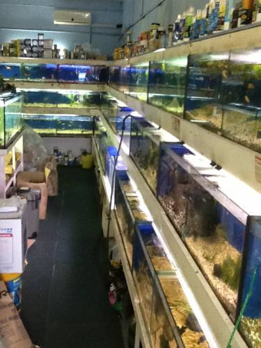 Clearwater Aquariums - Broome Tourism