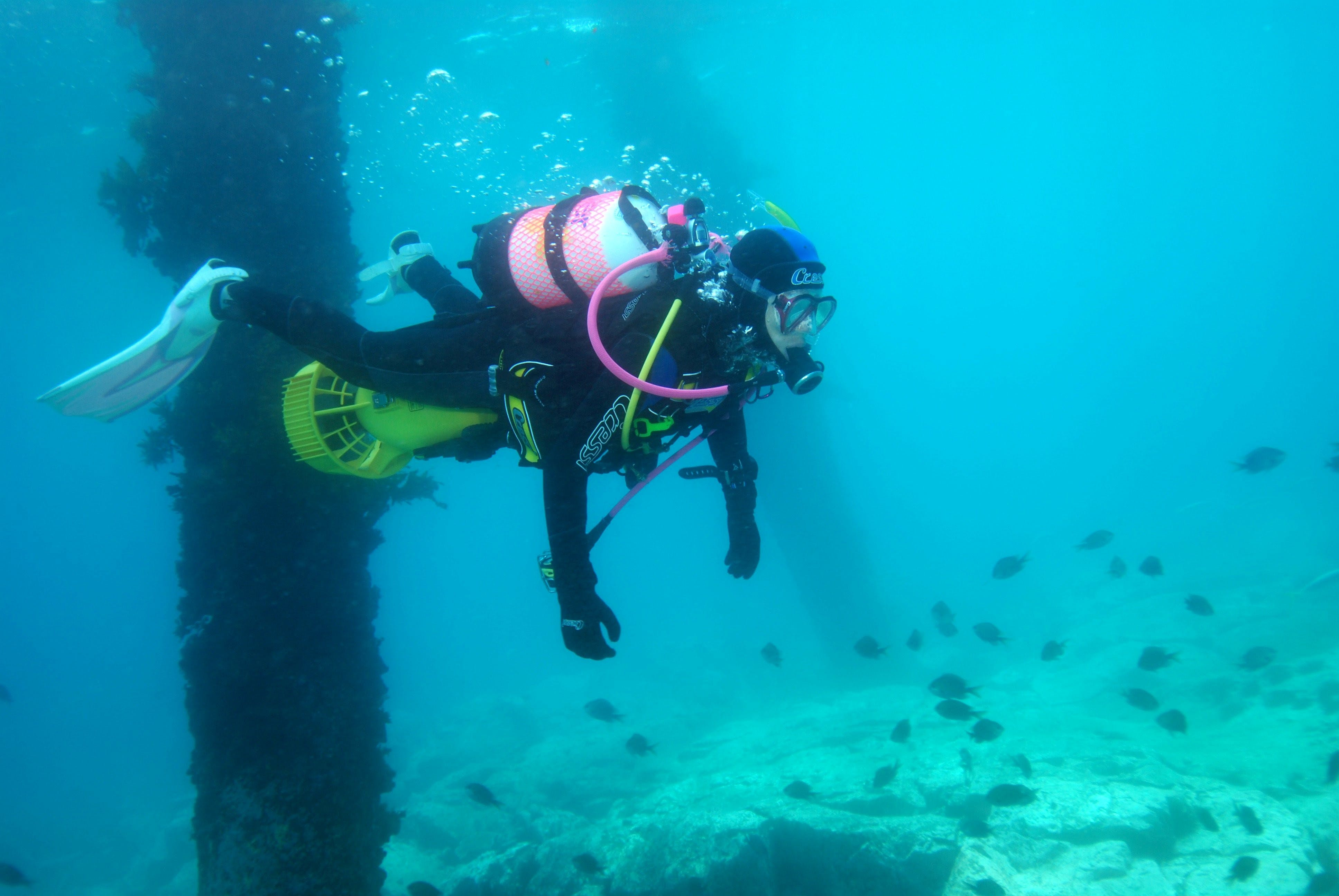 Shellharbour Scuba  and Photography Centre - Broome Tourism