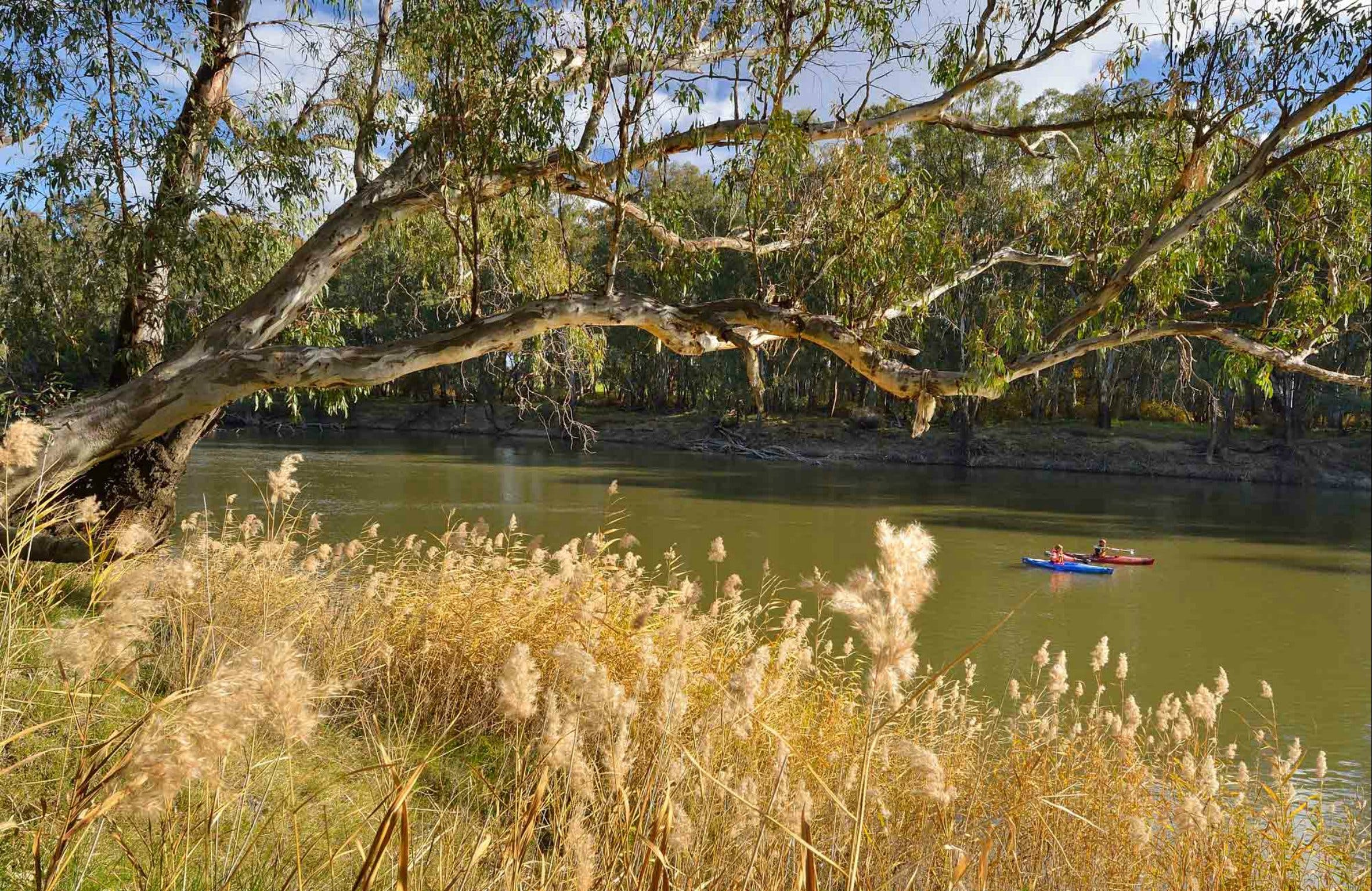 Murrumbidgee Valley National Park - Broome Tourism