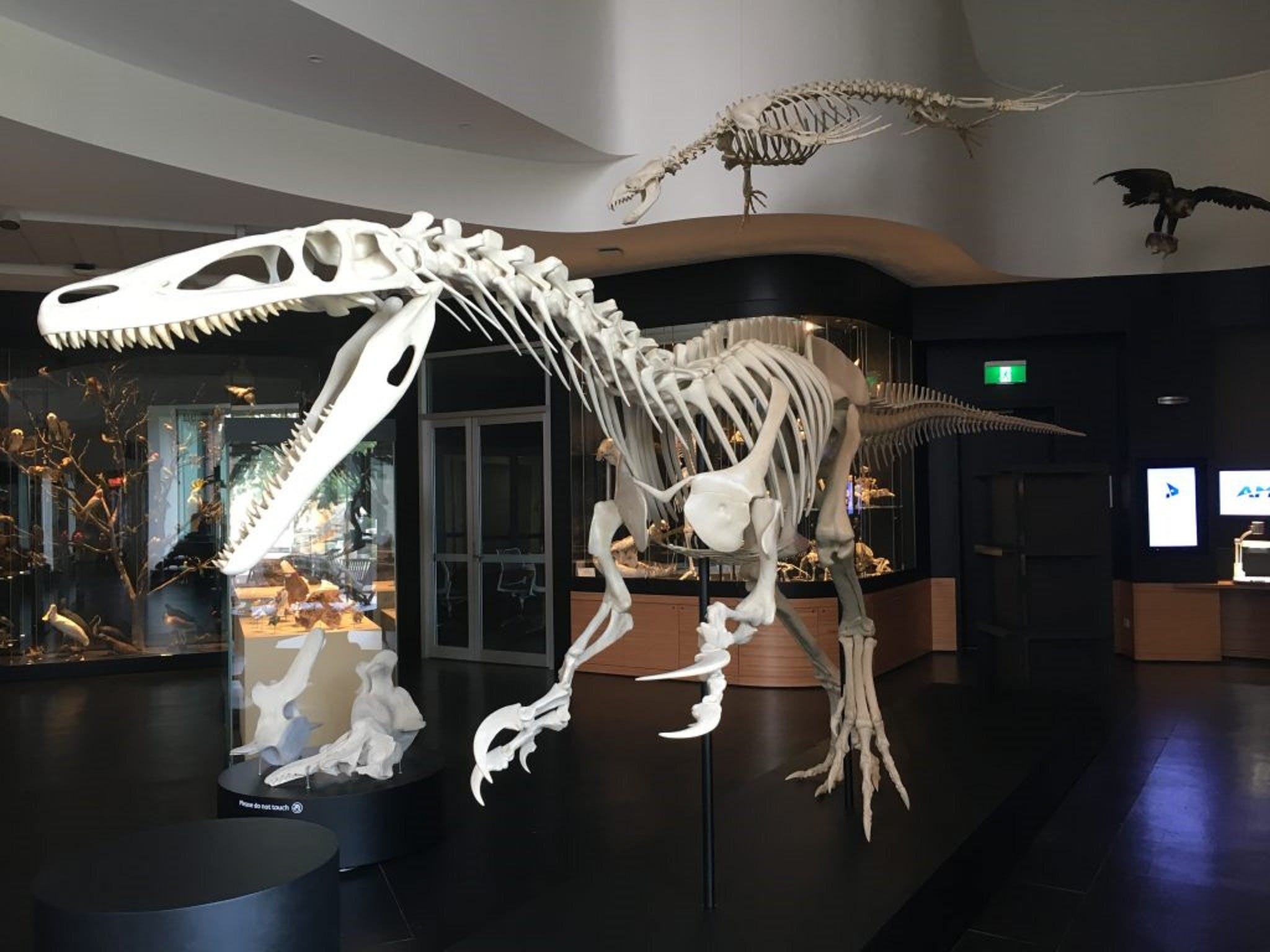 UNE Natural History Museum - Broome Tourism
