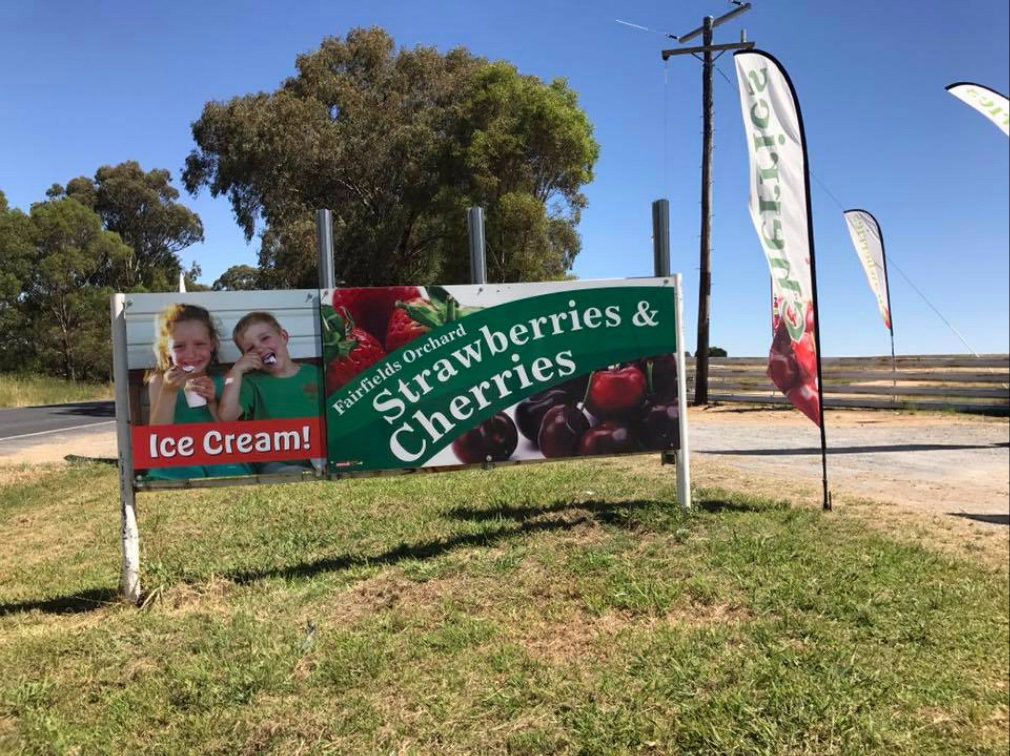Fairfield Orchard - Broome Tourism