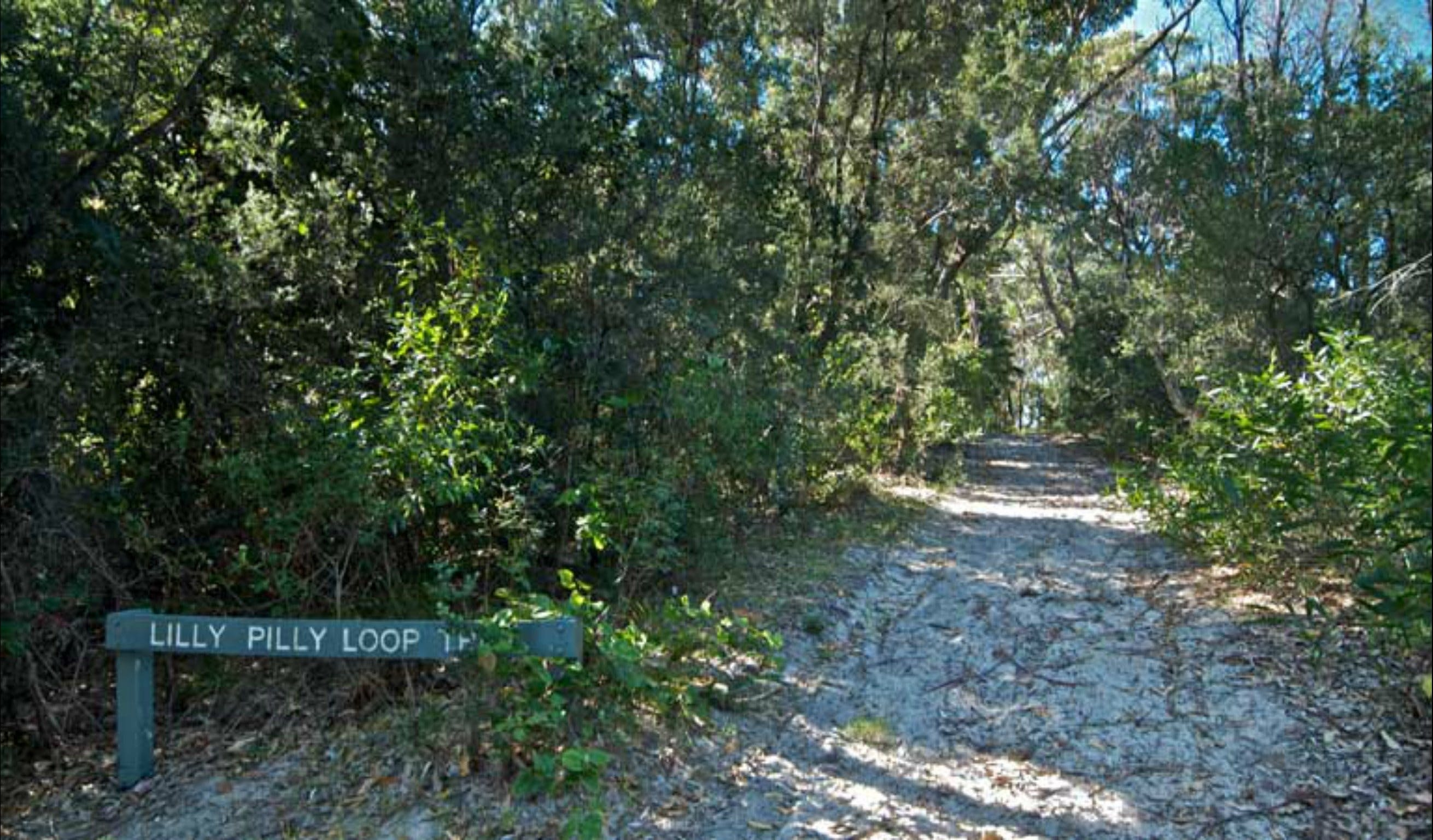 Lillypilly loop trail - Broome Tourism