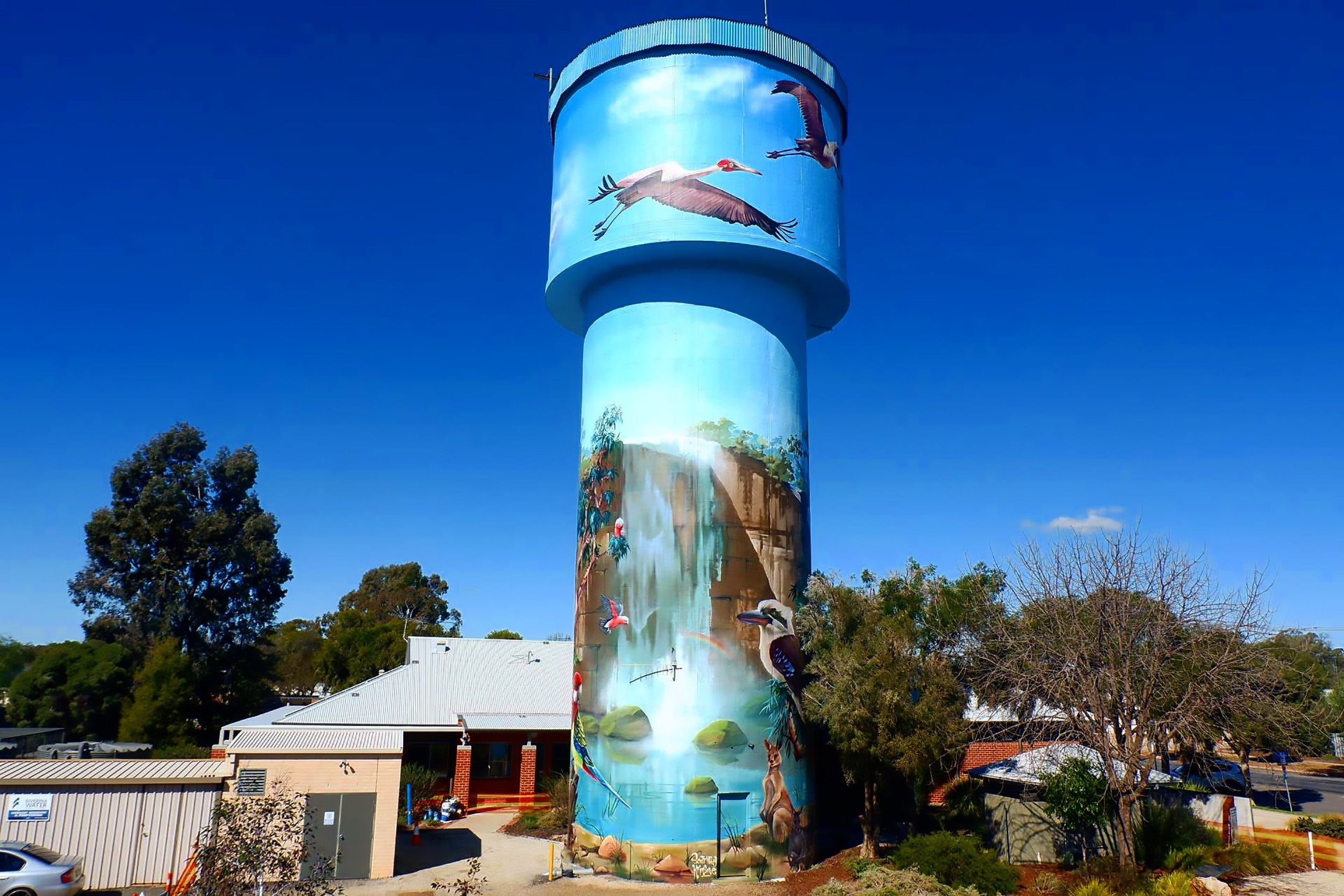 Lockhart Water Tower Mural - Broome Tourism
