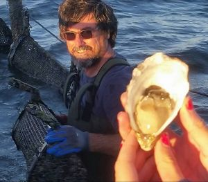 Southern Yorke Oysters - Broome Tourism