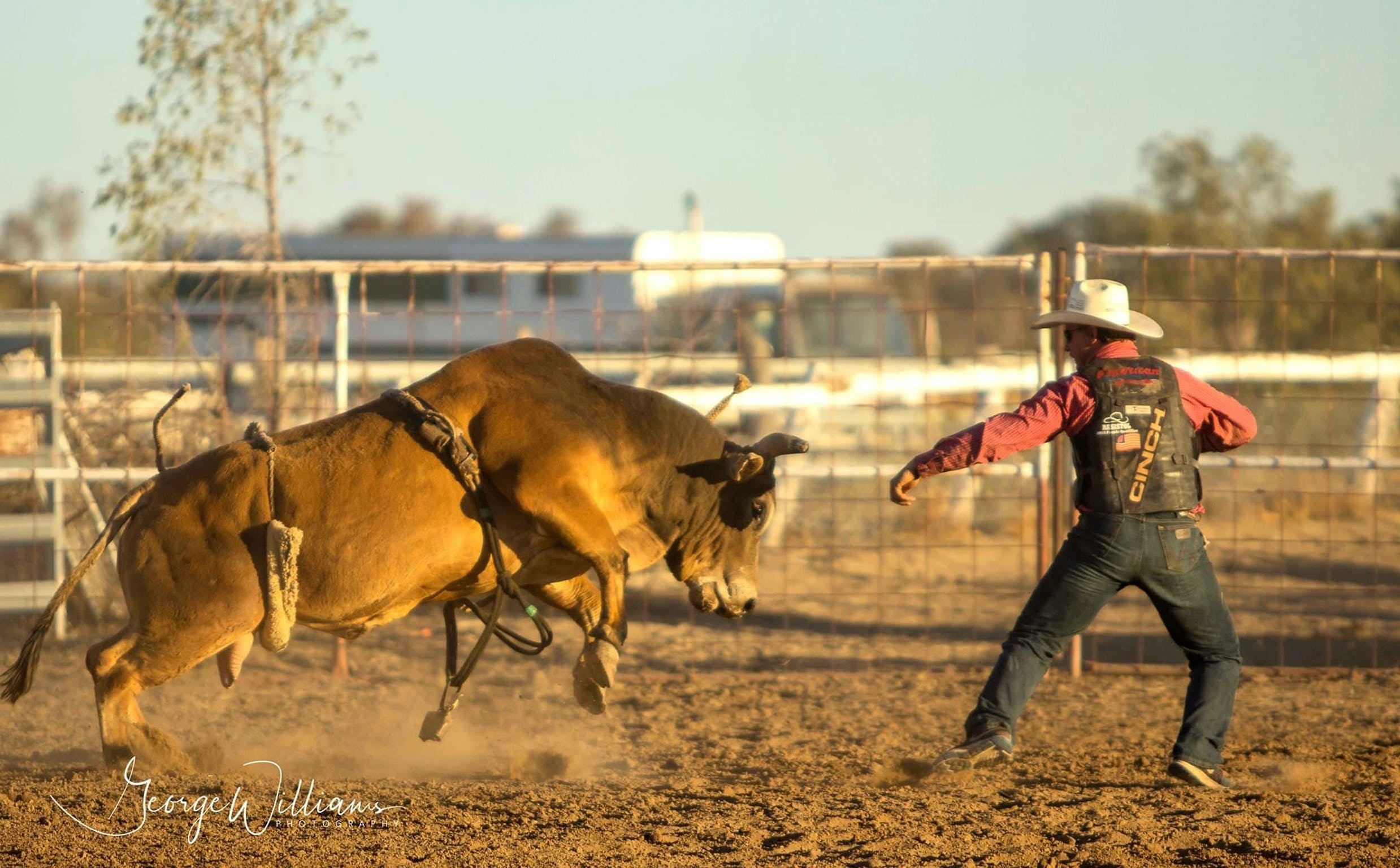 Walgett Charity Bushman's Carnival Rodeo and Campdraft - Broome Tourism