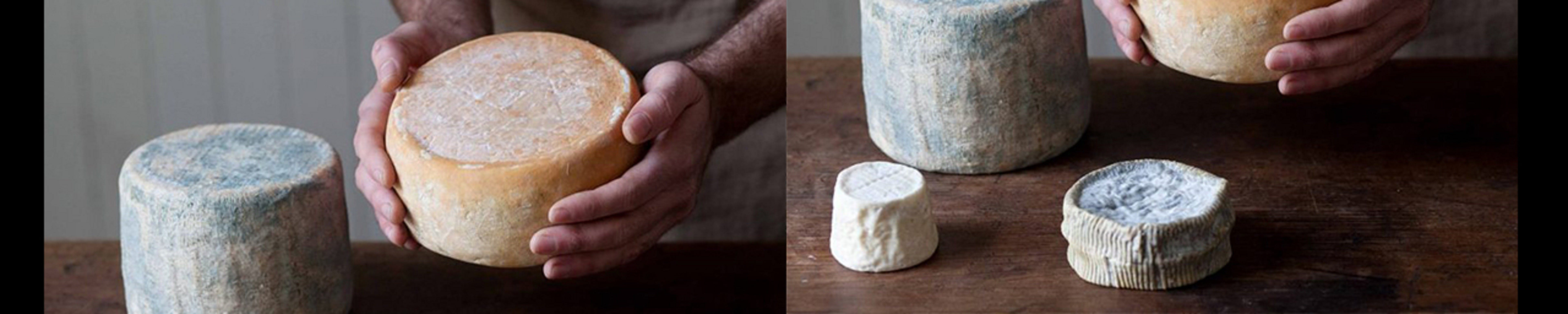 Cheese Making Basics Class - Broome Tourism